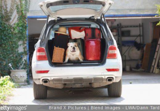 Voyage en voiture : comment bien charger les bagages
